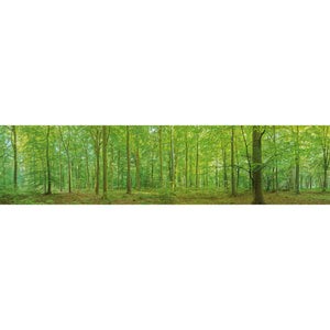 Wall Acoustics Full Size Mural Muffle Mural - Thetford Forest Full Size Mural
