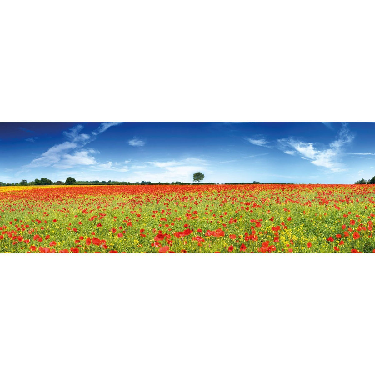 Wall Acoustics Muffle Mural - Poppies