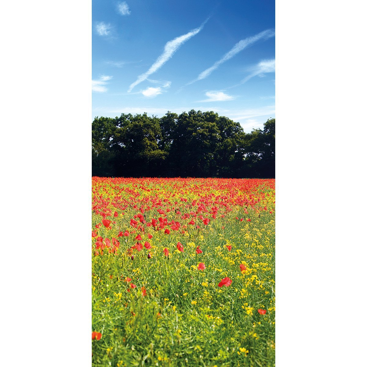 Muffle mural wall acoustic panel poppies panel 10