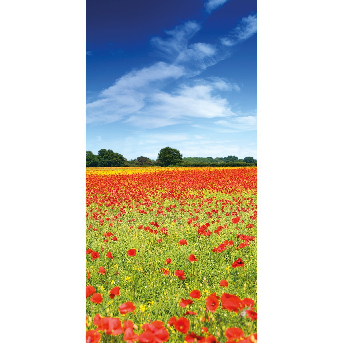 Muffle mural wall acoustic panel poppies panel 3