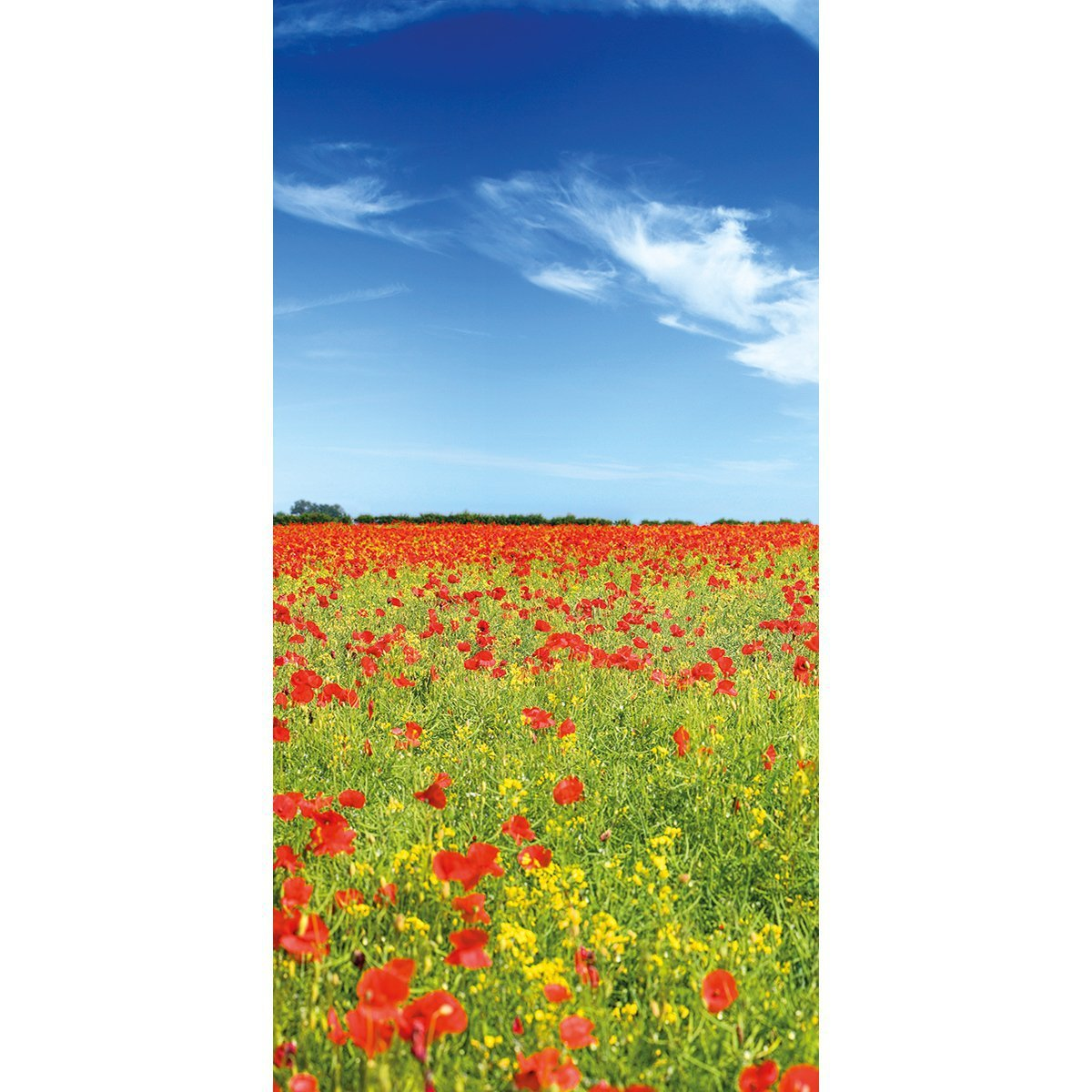 Wall Acoustics Panel 6 Muffle Mural - Poppies Panel 6