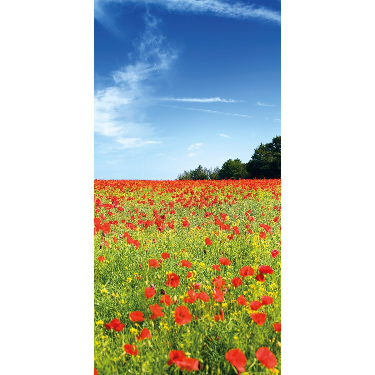 Wall Acoustics Panel 7 Muffle Mural - Poppies Panel 7