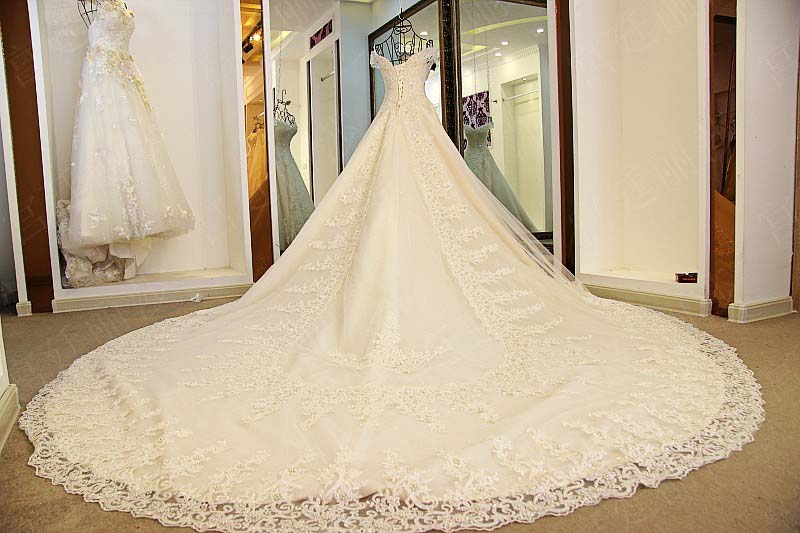 Gorgeous 2018 Ball Gown Wedding Dresses with Long Train Sparkly Lace ...