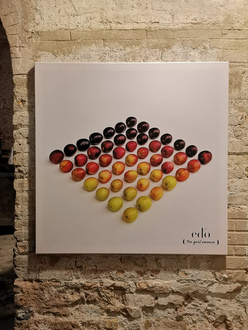 edo olive oil pop up store art canvas rainbow photography museum barcelona