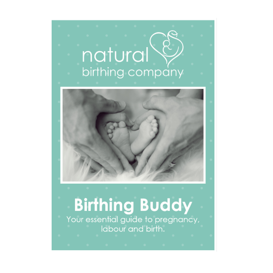 E-Book 'Birthing Buddy'