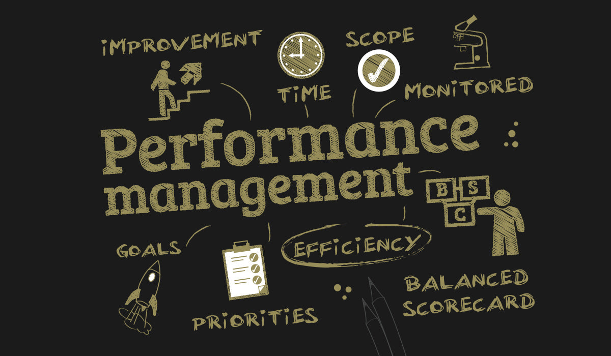 Performance Management Interviews and Processes