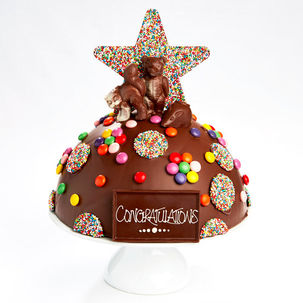 Large Chocolate Smash Cake *** PICKUP & DELIVERY***