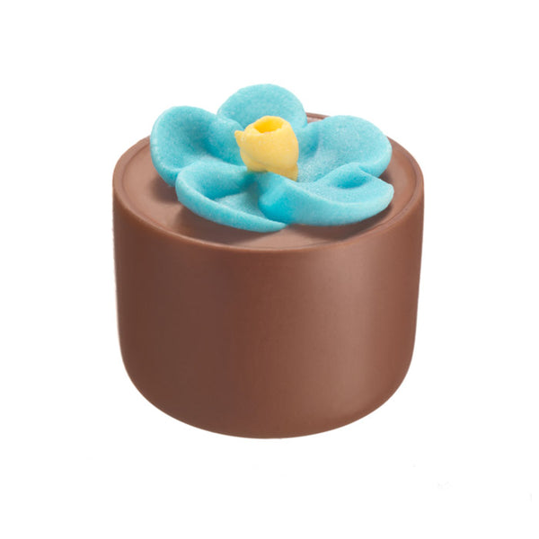 Chocilo Melbourne Milk Chocolate Hazelnut Praline Flower Pot Blue