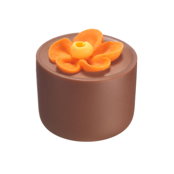 Chocilo Melbourne Milk Chocolate Hazelnut Praline Flower Pot Orange