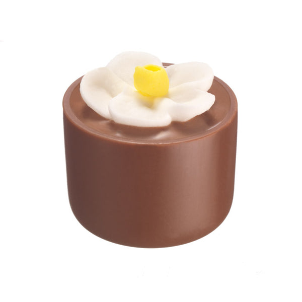 Chocilo Melbourne Milk Chocolate Hazelnut Praline Flower Pot White