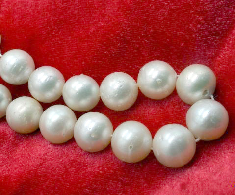 SOUTH SEA CREAM COLORED 12-13 MM ROUND SHAPED PEARL BEADS