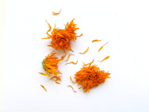 Inlight Calendula Flower