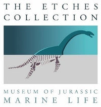 The Etches Collection Shop
