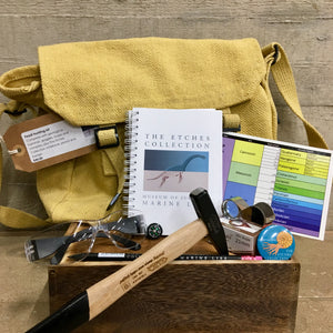 The Etches Collection Fossil Hunting Kit