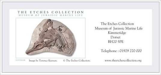 The Etches Collection General Gift Vouchers & Bay Tour Vouchers