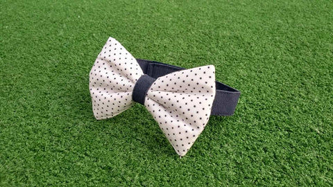 Bowtie - White with Blue Dots