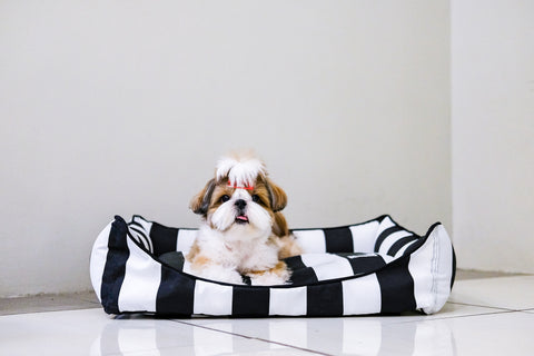 Basic Luxebed Small - Black and White Stripes