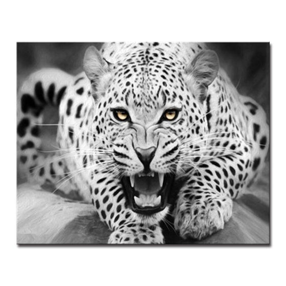 Fierce Black White Leopard - DIY Painting by Numbers Kit