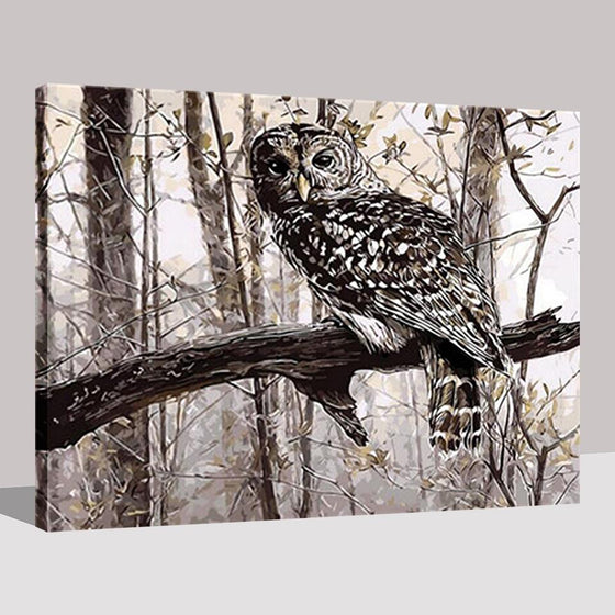 Owl On The Branch - DIY Painting by Numbers Kit