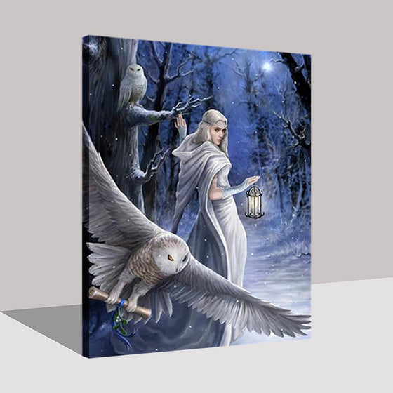 Beautiful Woman In White Dress And Owl In The Middle Of The Night - DIY Painting by Numbers Kit