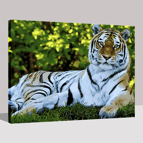 The Tiger - DIY Painting by Numbers Kit