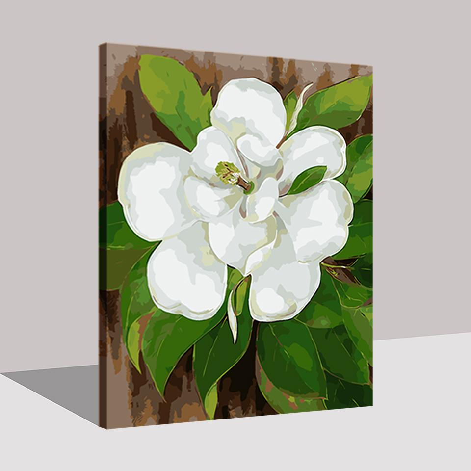 White Camellia Flower Diy Painting By Numbers Kit Canvasx Net