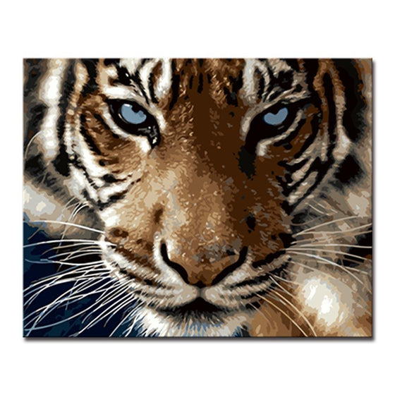 Tiger's Sharp Eyes - DIY Painting by Numbers Kit