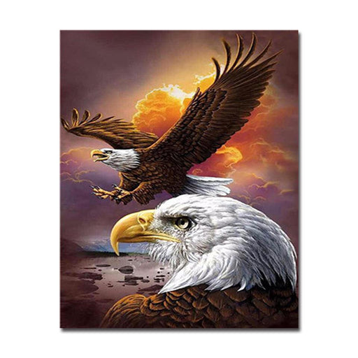 Two Eagles - DIY Painting by Numbers Kit