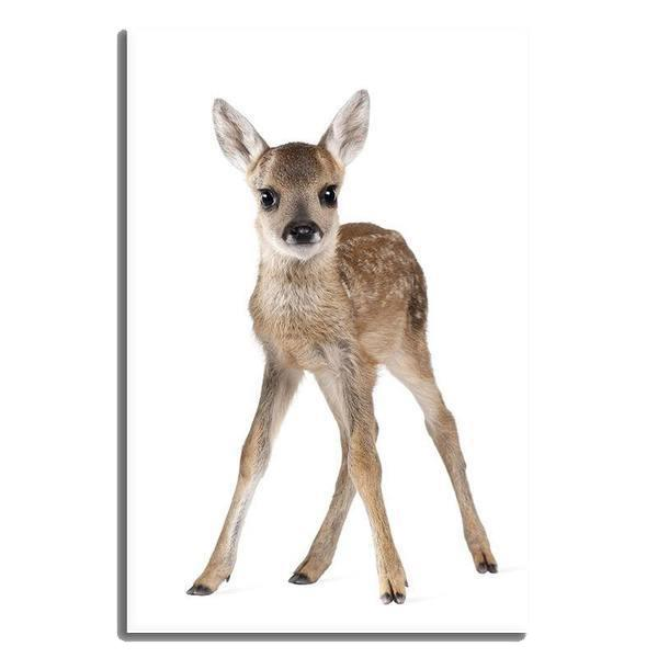 Adorable Doe Canvas Wall Art