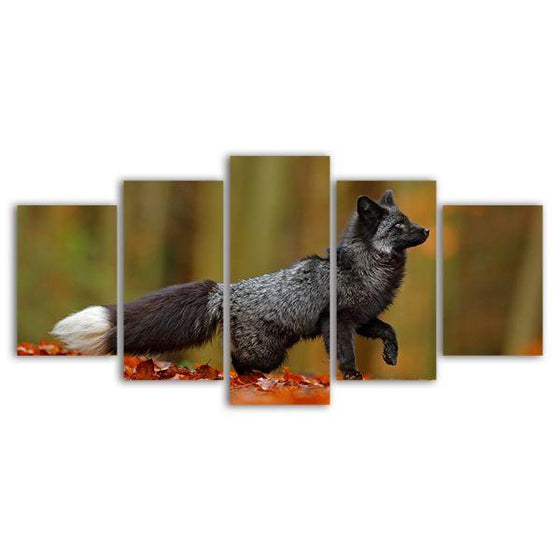 Adorable Wild Black Fox 5 Panel Canvas Wall Art