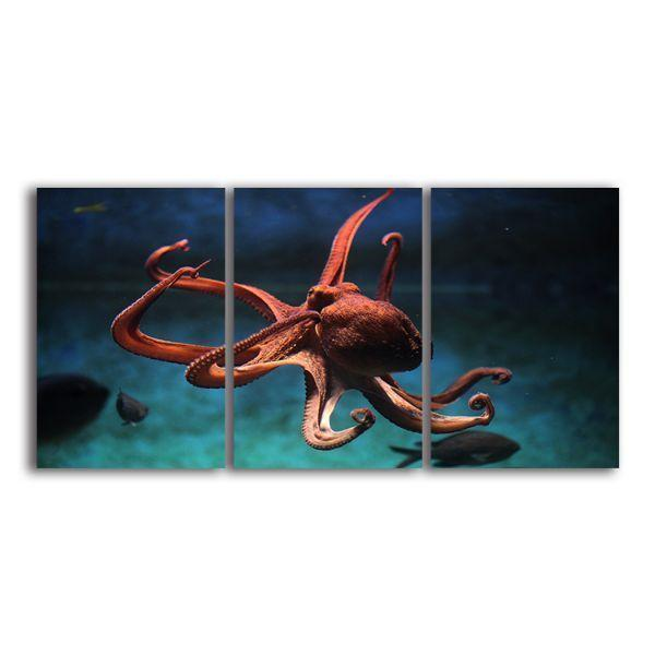Amazing Octopus Canvas Wall Art