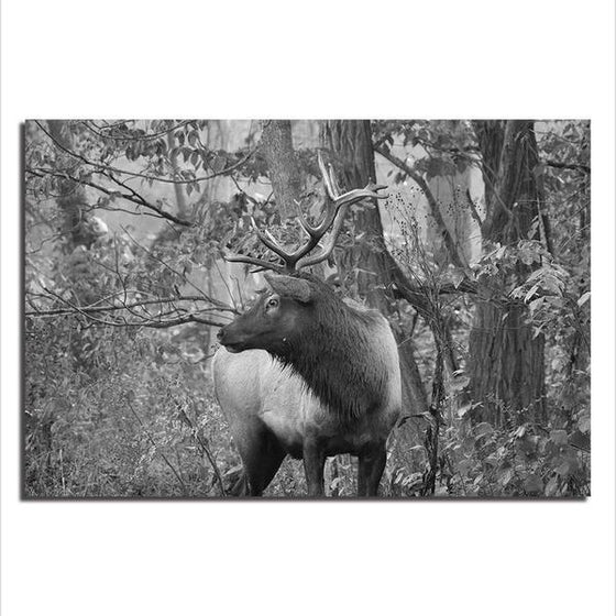 Black And White Elk Canvas Wall Art