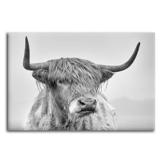 Black And White Highland Cow Canvas Wall Art