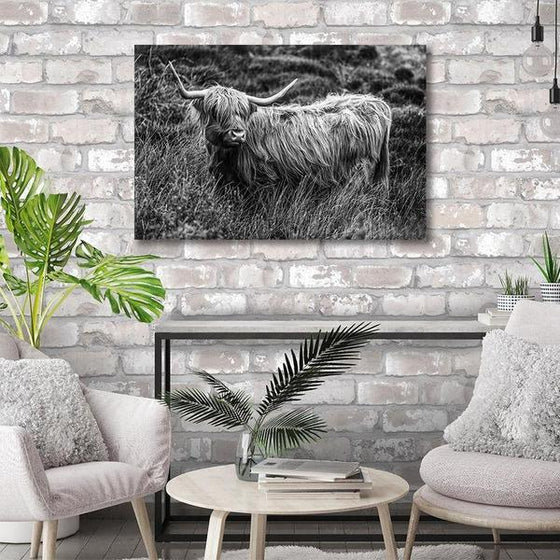 Black And White Upland Cattle Canvas Wall Art Decor