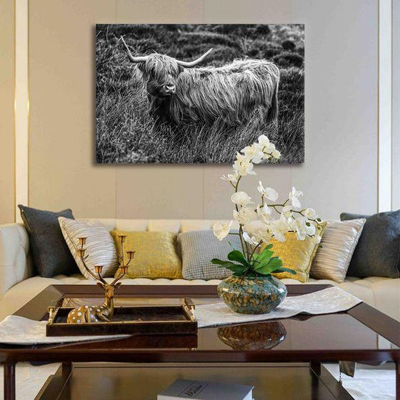Black And White Upland Cattle Canvas Wall Art Ideas