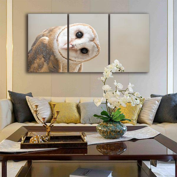 Buy Charming White Owl 3 Panels Canvas Wall Art - photo#37