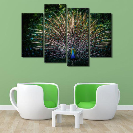 Colorful Peacock Tail 4 Panels Canvas Wall Art Set