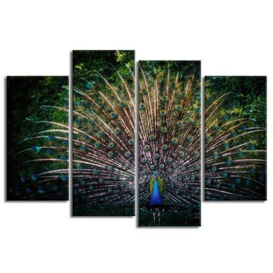 Colorful Peacock Tail 4 Panels Canvas Wall Art