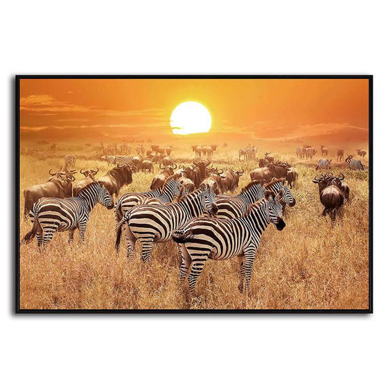 African Zebras 1 Panel Canvas Wall Art
