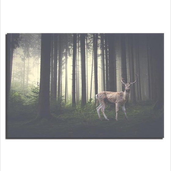 Foggy Forest With A Wild Deer Canvas Wall Art