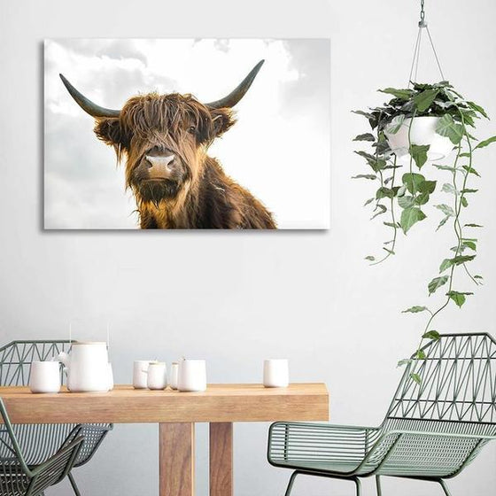 Highland Cattle Canvas Wall Art Dining Room