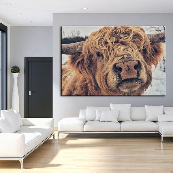 Highland Cattle Face Canvas Wall Art Living Room