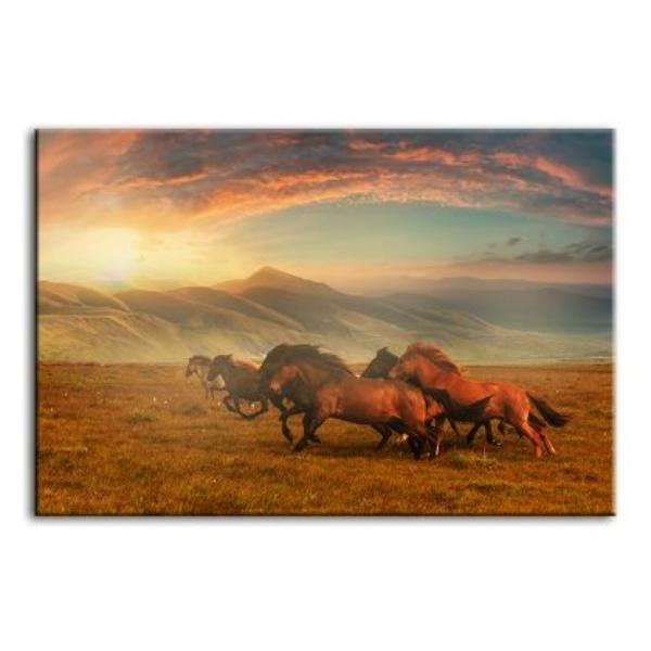 Horses At Assy Plateau Canvas Wall Art