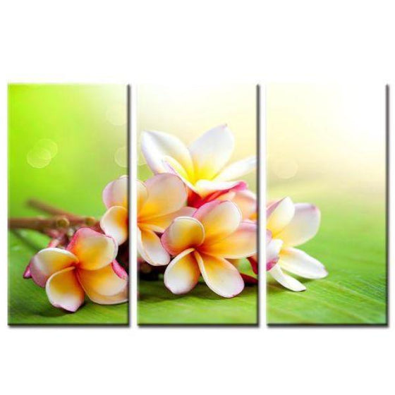 Lovely Orchids Wall Art