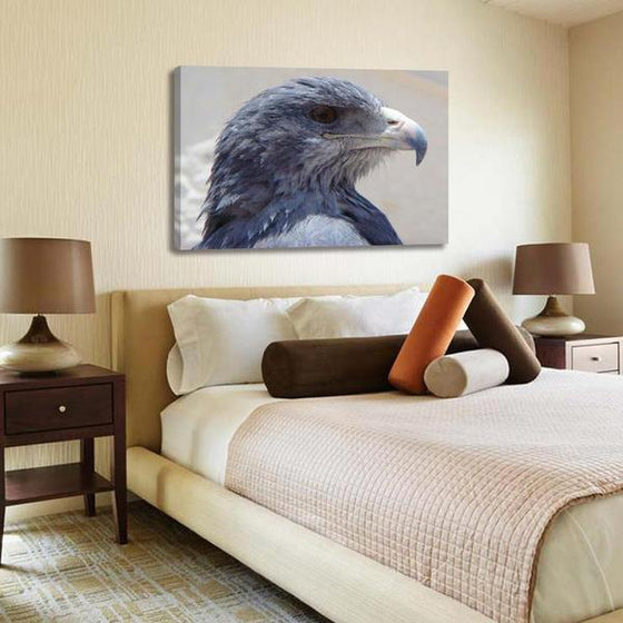 Magnificent Eagle Head Canvas Wall Art Bedroom