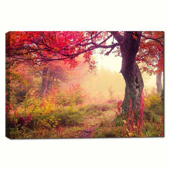 Picturesque Forest Sunrise Wall Art Canvas