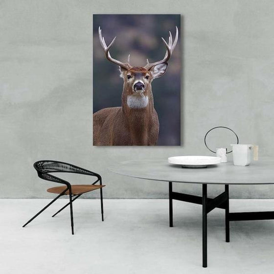 Proud Wild Deer Canvas Wall Art Ideas