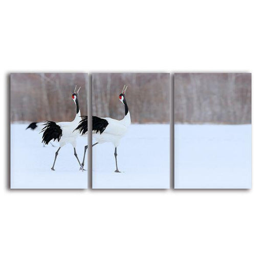 Red Crowned Crane Canvas Wall Art