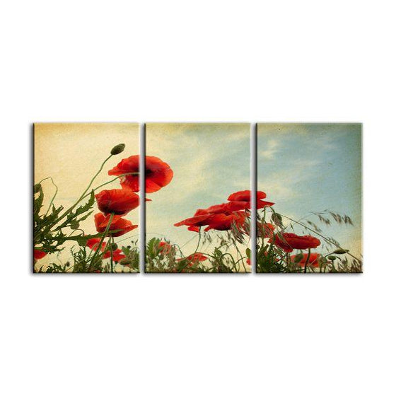 Red Poppy Flowers 3 Panels Canvas Wall Art