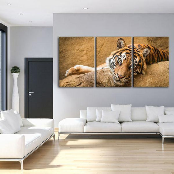 Relaxed Wild Tiger 3 Panels Canvas Wall Art Living Room